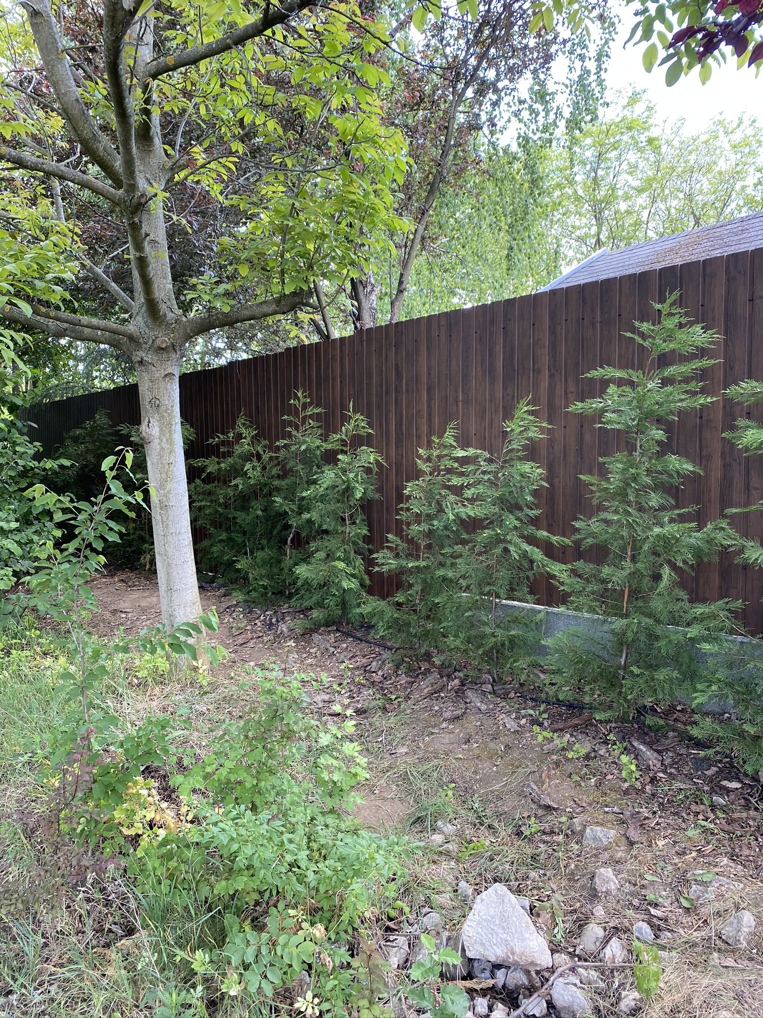 Piliscsaba kerítés építés trapézlemezből