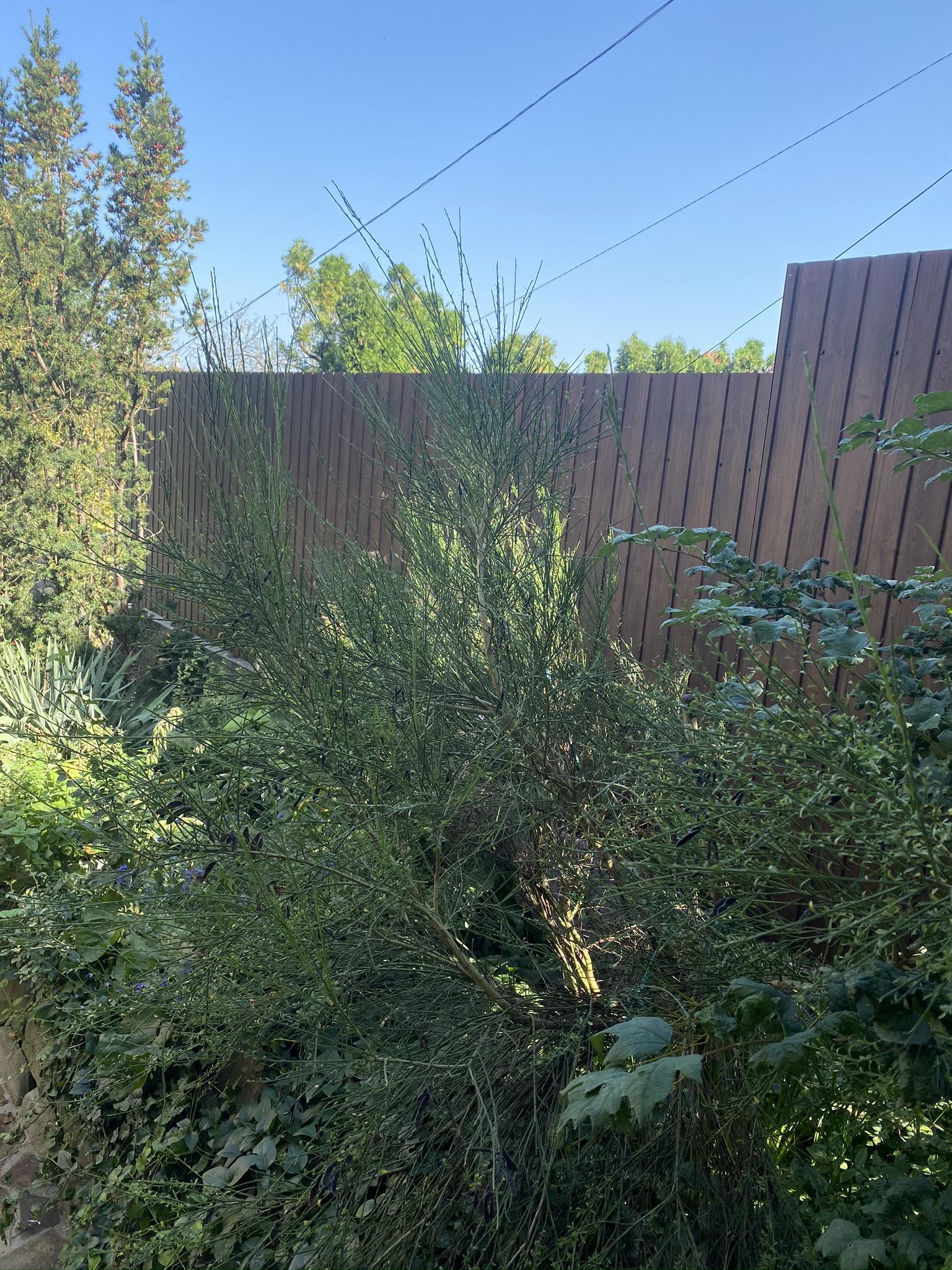 Szentendre kerítés építés trapézlemezből